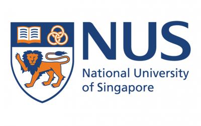 NUS Fellows Programme Scholarship